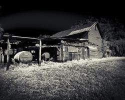 Abandon Honey Farm